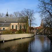 Swans and the Begijnhof Bridge, Brugge