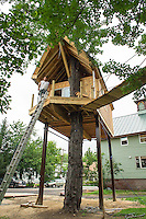 Builder Bob Cosco has made many trips up and down this ladder as he has single handedly built this Tree House on Street in Laconia.  (Karen Bobotas/for the Laconia Daily Sun)