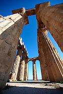 Greek Dorik Temple ruins of Temple F at Selinunte, Sicily photography, pictures, photos, images & fotos. 31 Greek Dorik Temple columns of the ruins of the Temple of Hera, Temple E, Selinunte, Sicily .<br /> <br /> If you prefer to buy from our ALAMY PHOTO LIBRARY  Collection visit : https://www.alamy.com/portfolio/paul-williams-funkystock/selinuntetemple.html<br /> Visit our CLASSICAL WORLD HISTORIC SITES PHOTO COLLECTIONS for more photos to buy as buy as wall art prints https://funkystock.photoshelter.com/gallery-collection/Classical-Era-Historic-Sites-Archaeological-Sites-Pictures-Images/C0000g4bSGiDL9rw