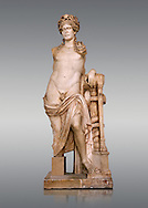 Second Century Roman statue of Apollo excavated from the Theatre of Carthage. The Bardo National Museum, Tunis, Tunisia. Inv No C939.   Against a grey background. .<br /> <br /> If you prefer to buy from our ALAMY STOCK LIBRARY page at https://www.alamy.com/portfolio/paul-williams-funkystock/greco-roman-sculptures.html . Type -    BARDO    - into LOWER SEARCH WITHIN GALLERY box - Refine search by adding a subject, place, background colour, museum etc.<br /> <br /> Visit our CLASSICAL WORLD HISTORIC SITES PHOTO COLLECTIONS for more photos to download or buy as wall art prints https://funkystock.photoshelter.com/gallery-collection/The-Romans-Art-Artefacts-Antiquities-Historic-Sites-Pictures-Images/C0000r2uLJJo9_s0c