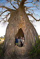 A group of tourists on safari pose for a photo inside a baobab tree, Tarangire Safari Lodge, Tarangire National Park, Tanzania