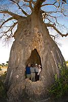 A group of tourists on safari pose for a photo inside a baobab tree, Tarangire Safari Lodge, Tarangire National Park, Tanzania