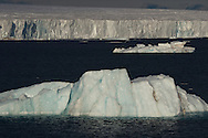 Austfonnabreen glacier in the background and icebergs in the foreground, Nordaustlandet, Svalbard, Norway, Arctic
