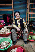 Portrait of a Korean older woman seller at the traditional market place in Gongju. This Korean city was the second capital of the Baekje kingdom from AD 475 for 70 years. / Gongju, South Korea, Republic of Korea, KOR, 31 October 2009.