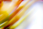 Abstract brilliant colorful abstract in yellow and white