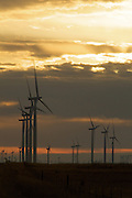 Sunrise over wind turbines generating electrical power at Horse Hollow Wind Farm, Nolan county, Texas the world's largest wind power project.