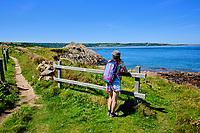 France, Manche (50), Cotentin, Saint-Germain-des-Vaux, le Sentier Littoral ou GR223, plage de galet // France, Normandy, Manche department, Cotentin, Saint-Germain-des-Vaux, coastal path, pebble beach
