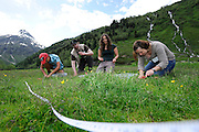 Von links nach rechts: Natalie Ismaiel, Hanno Müller, Lena Teubl, Ferreira de Quadros Aline (alle Bodenökologie) GEO-Tag der Artenvielfalt im Nationalpark Hohe Tauern 2013. Österreich.