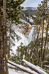 Lower Yellowstone Falls on a Snowcoach tour of Yellowstone National Park.