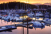 Recreational boats in the marina of Friday Harbor on San Juan Island, Washington, USA