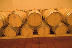 Chile Wine Country: Barrels at Concha y Toro Winery, Vina Concha y Toro, near Santiago..Photo #: ch475-33807..Photo copyright Lee Foster, 510-549-2202, www.fostertravel.com, lee@fostertravel.com.