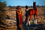 An Arab sheikh, or tribal or village leader, watches over a collection of pure-bred Arabian horses has been preserved on the island for more than 200 years by the Al Khalifa family. Bahraini Arabian horses are famous for their unusual and<br />beautiful coats, which regardless of color has an iridescent sheen.   © Steve Raymer / National Geographic Creative