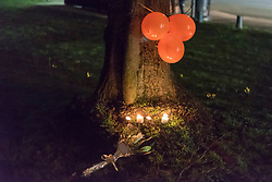 © Licensed to London News Pictures. 02/02/2018. LONDON, UK.  A small candlelit memorial on Harefield Green in north west London in memory of teenagers Harry Louis Rice, 17, George Toby Wilkinson, 16 and Josh McGuinness, 16.  The tribute marks seven days since the teenagers lost their lives in the Hayes car crash.  Balloons were released into the air, timed for 8.40pm, the time of the crash.   Photo credit: Stephen Chung/LNP