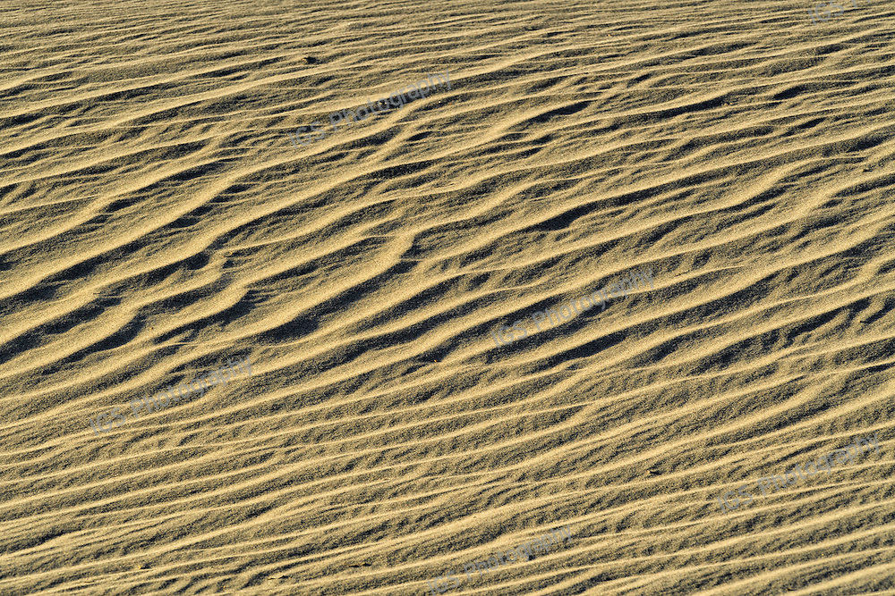 Wind blown sand ripples Mesquite San Dunes Stovepipe Wells Death Valley National Park