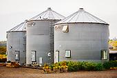 Abby Road Farm
