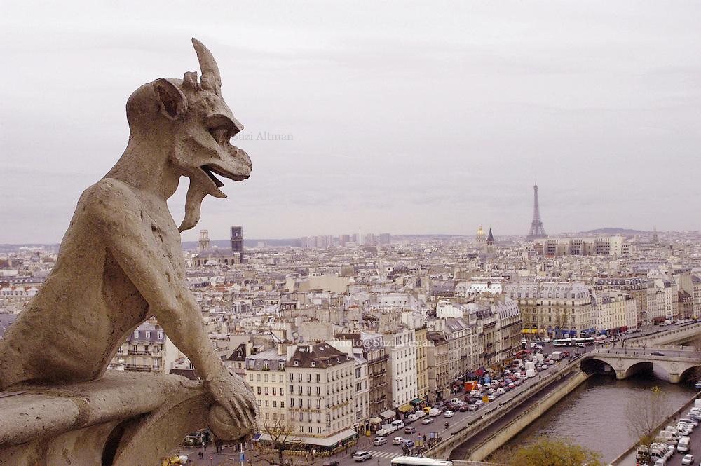 Notre Dame Prais France Photo©Suzi Altman