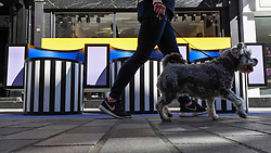 """© Licensed to London News Pictures. 14/09/2019. LONDON, UK.  A dogwalker passes a sculptural bench as """"Walala Lounge"""" opens in Mayfair's South Molton Street.  Artist and designer Camille Walala's installation comprises 10 sculptural benches, accompanied by planters and a series of oversized flags strung, bunting-style, from shopfront to shopfront, converting the street into an immersive corridor of colour as part of this year's London Design Festival.  Photo credit: Stephen Chung/LNP"""