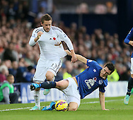Everton's Gareth Barry tussles with Swansea's Gylfi Sigurdsson<br /> <br /> Barclays Premier League- Everton vs Swansea City - Goodison Park - England - 1st November 2014 - Picture David Klein/Sportimage