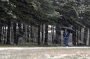 A winter walk on a snowy day, Baxter County, Arkansas.
