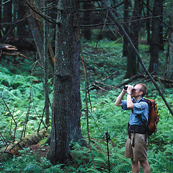 East Montpelier, VT. TPL staff member explores the forest near Mallory Brook.