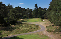 Bosch en Duin - Droogte op Golf Club de Pan. COPYRIGHT KOEN SUYK