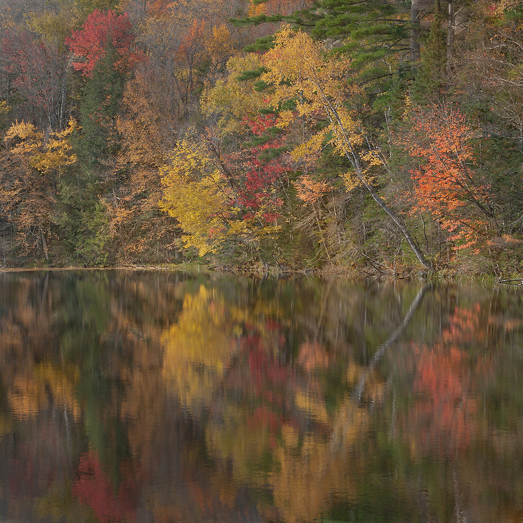 Still waters reflect the myriad of golden hues on one of Vermont's beautiful lakes.