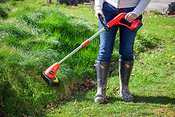 Rechargeable grass strimmer for strimming long grass