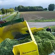 Nederland Giessen 28 augustus 2009 20090828 Foto: David Rozing  ..Serie over levensmiddelensector                                                                                      .Machinale oogst vantuinbonen, de boontjes worden vanuit de oogstmachine overgestort in een container. Deze wordt vervolgens getransporteerd naar de fabriek van HAK, waar de groente dezelfde dag wordt verwerkt. Boer kijkt of alles in goede orde verloopt. .Harvest ..Foto: David Rozing
