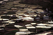 Flooded rice paddies in the Paro Valley, Bhutan. From Peter Menzel's Material World Project.