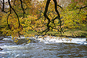 River Usk flowing in the Brecon Beacons, Powys, Wales, UK