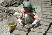 India, Ladakh region state of Jammu and Kashmir, Shey, Woman making mud blocks