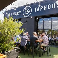 Dainton Beer Brewery 2021
