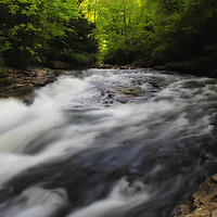 """""""Forest Stream"""" <br /> <br /> Scenic Meadow Run in Ohiopyle State Park located in the Laurel Highlands of PA.<br /> <br /> Laurel Highlands by Rachel Cohen"""