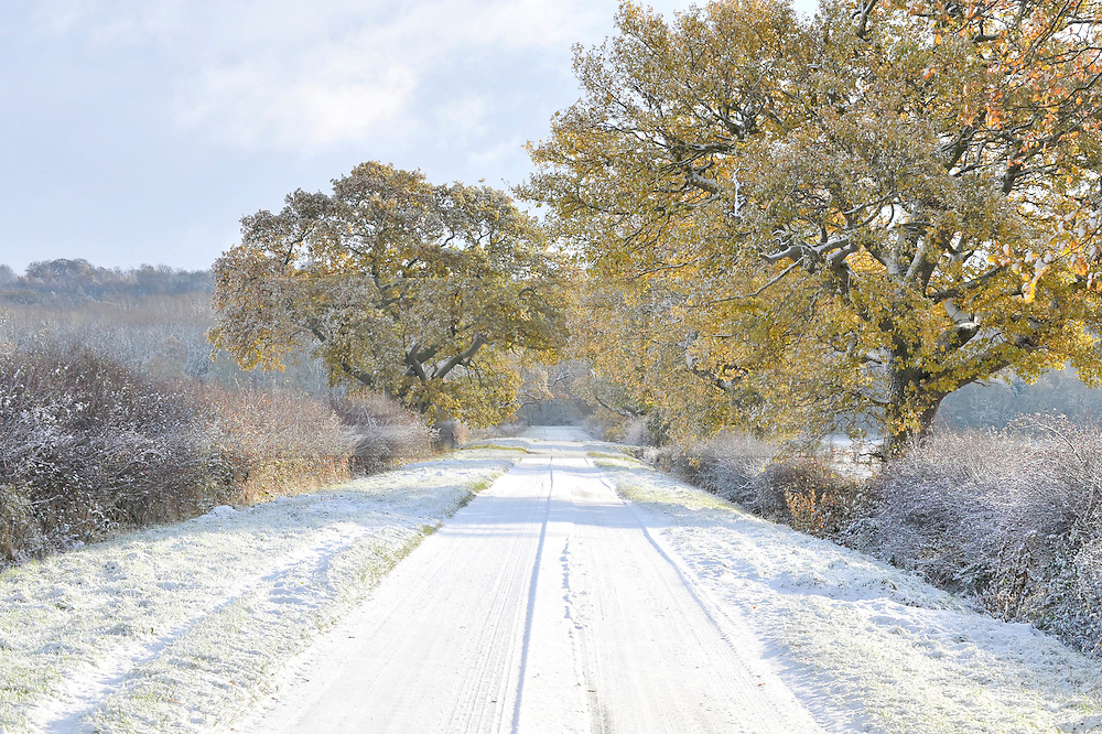 ©London News Pictures. 27/11/2010. A rural road in the Vale of Belvoir in Northern Leicestershire this Saturday. Temperatures are expected to stay below freezing this weekend resulting in transport problems throughout the country.  Photo credit should read Tim Goode/London News Pictures