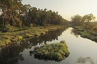 Morning in the delta. The Karavasta Lagoons National Park, Albania June 2009