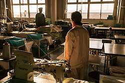 N (79) stands in the  factory at Fukushima Prison for women in Fukushima prefecture, Japan. <br /> She is serving her third prison sentence for stealing a paper fan at a shopping mall.