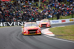 October 7, 2018 - Bathurst, NSW, U.S. - BATHURST, NSW - OCTOBER 07: Fabian Coulthard / Tony D'Alberto in the Shell V-Power Racing Team Ford Falcon ahead of Scott McLaughlin / Alexandre Premat in the Shell V-Power Racing Team Ford Falcon at the Supercheap Auto Bathurst 1000 V8 Supercar Race at Mount Panorama Circuit in Bathurst, Australia on October 07, 2018 (Photo by Speed Media/Icon Sportswire) (Credit Image: © Speed Media/Icon SMI via ZUMA Press)
