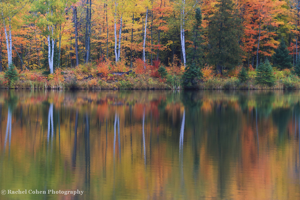 """Lake Plumbago in Reflection""<br /> <br /> Beautiful autumn reflections on Lake Plumbago in Alberta Michigan!"