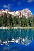 Morning light on Mount Odaray reflected in Lake O'Hara, Canadian Rockies, Yoho National Park, British Columbia, Canada.