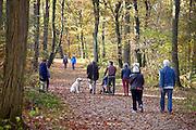 Nederland, Nijmegen, 1-11-2015 Dit weekeind gaf prachtige herfstdagen. FOTO: FLIP FRANSSEN/ HH