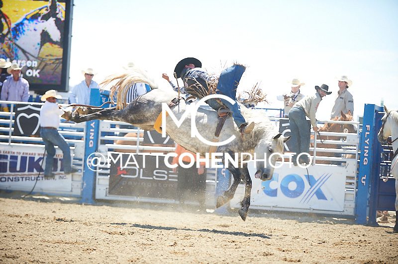 Bareback rider Orin Larsen of Goodwell, OK rides -Q38 Tino's Juarez at the Rancho Mission Viejo Rodeo in San Juan Capistrano, CA.  <br /> <br /> <br /> UNEDITED LOW-RES PREVIEW<br /> <br /> <br /> File shown may be an unedited low resolution version used as a proof only. All prints are 100% guaranteed for quality. Sizes 8x10+ come with a version for personal social media. I am currently not selling downloads for commercial/brand use.