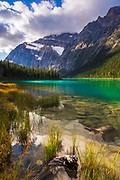 Mount Edith Cavell from Cavell Lake, Jasper National Park, Alberta Canada