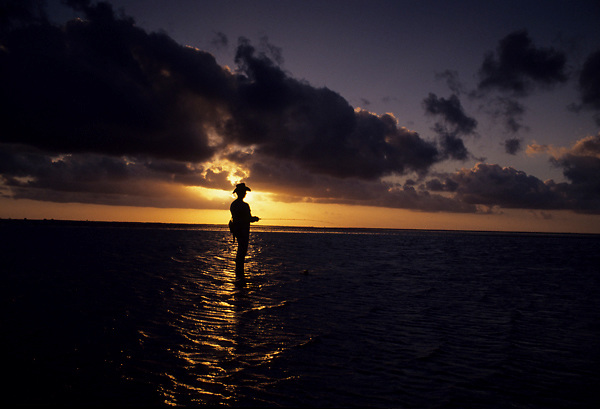 Stock photo of the silhouette of a man standing in Galveston Bay fishing at sunset