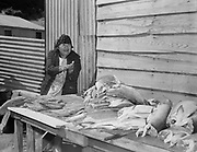 Ida Thompson Wynookie (daughter of Chief Tommy Thompson) at the last Feast of the First Salmon at Celilo Village before Celilo Falls were permanently submerged by the backwater of The Dalles Dam. April 29, 1956.