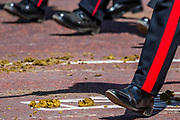 Soldiers take their luck with the remains of the Cavalry as they return down the Mall - His Royal Highness the Duke of York reviews the final rehearsal for the Trooping the Colour on Horseguards Parade and the Mall.