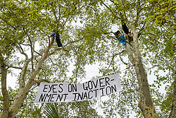 "© Licensed to London News Pictures. 23/04/2019. LONDON, UK.  Activists have climbed trees overlooking at Parliament Square during ""London: International Rebellion"", on day nine of a protest organised by Extinction Rebellion.  Protesters are demanding that governments take action against climate change.  Police have issued a section 14 order for Parliament Square and expect that the occupation of the square will have concluded by the end of the day.  Photo credit: Stephen Chung/LNP"