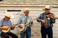 Montana Old Time Fiddlers Picnic, Livingston Montana, banjo fiddle and mandolin, <br /> MODEL RELEASED BANJO PLAYER ONLY