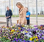 Koningin Maxima bezoekt kwekerij in Honselersdijk