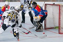 Jure Sotlar (#20) of Dinimati Horjul scores a goal at inline hockey match between Dinamiti Horjul and Slovenia at HorjulCup, on June 9, 2011 in Sportni park, Horjul, Slovenia. (Photo by Matic Klansek Velej / Sportida)