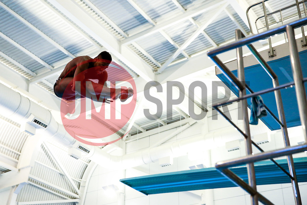 Yona Knight-Wisdom from City of Leeds Diving Club and Jamaica (Guest) warms up for the Mens 3m Springboard Preliminary - Mandatory byline: Rogan Thomson/JMP - 23/01/2016 - DIVING - Southend Swimming & Diving Centre - Southend-on-Sea, England - British National Diving Cup Day 2.